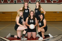Volleyball Group